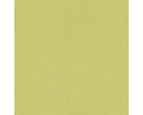 Линолеум натуральный  Marmoleum Fresco 3885