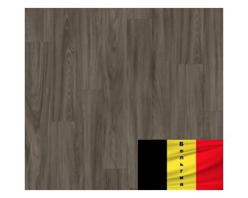 LVT Moduleo Transform Baltic Maple