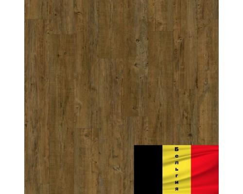 LVT Moduleo Transform Latin Pine 24828