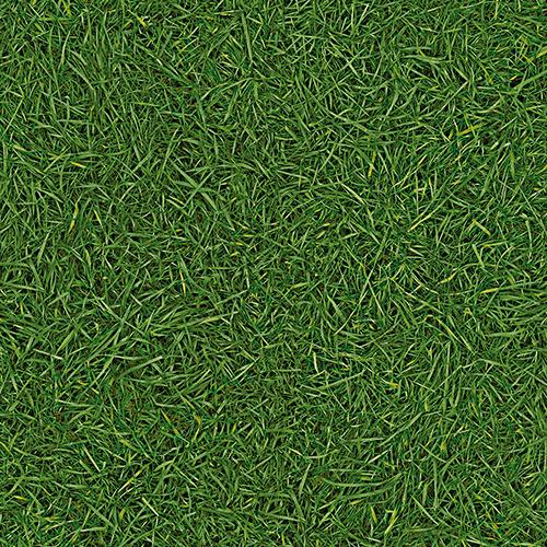Линолеум ПВХ IVC Bingo Grass 25