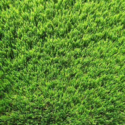 Искусственная трава Orotex Amazonia 6957 Lizard