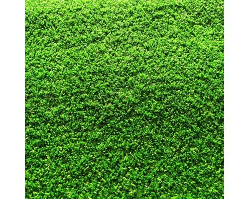 Искусственная трава Orotex Golf 7025 Green