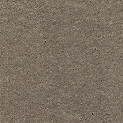 Ковровое покрытие Associated Weavers Seduction 49
