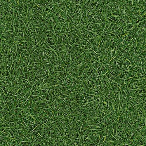 Линолеум IVC Surfaces Grass 25